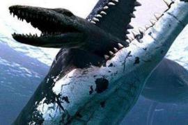 史前最恐怖的食肉动物 平滑侧齿龙和巨齿鲨谁才是王者