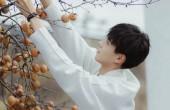 11月开机新剧盘点,白敬亭许魏洲强强联合,潘粤明和他搭档被期待-尚之潮